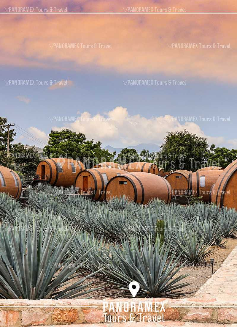 ruta del tequila la cofradia